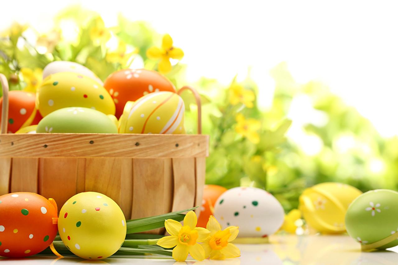Pasqua e Ponte del 25 Aprile all'Hotel Roland